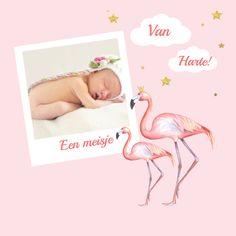 Felicitatie voor een geboorte van een meisje met leuke flamingo versierd met wolken en sterren en plek voor een leuke foto