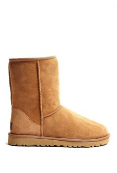 Chestnut Classic Short Boots by UGG Australia