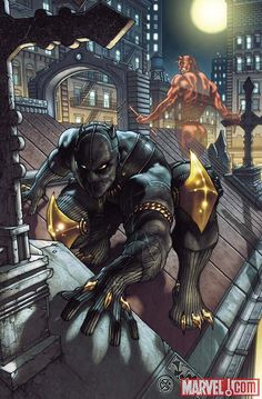 Black Panther Superhero | Black Panther: The Man Without Fear #513