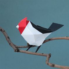 """Cardenal"" 