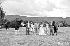 Ishara and Byron's Beautiful Country Wedding in Canberra - Gemma Clarke Photography Bridesmaid Bouquet, Bridesmaid Dresses, Country Weddings, Hair Studio, Walking Down The Aisle, Horses, In This Moment, Pictures, Photography