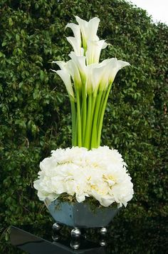 Tall white Calla lilies are nestled into an urn full of lush white peonies.