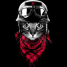 The Adventurer Cat is a T Shirt designed by clingcling to illustrate your life and is available at Design By Humans