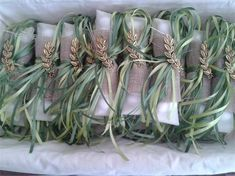 Wedding Candy, Wedding Party Favors, Our Wedding, Wedding Gifts, Wedding Decorations, Olive Branch Wedding, Olive Wedding, Gift Box Design, Creative Gift Wrapping