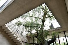 Staircases descend around a courtyard hidden inside this four-storey concrete house, set into a steep rock face in Mexico City by local studio 3archlab.