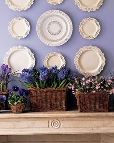 great collection of hanging plates on wall