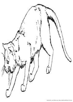 Ausmalbilder Katzen_60.jpg