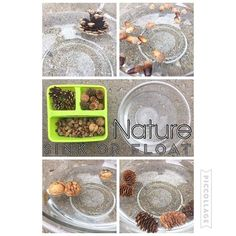 """Nature: Sink or Float {Bree wouldn't let me add rocks so nothing sank...but it was still fun listening to her guesses and reasonings (""""This will sink because it's so big!"""") 🌰💚} . . . . #toddlerfun #preschoolfun #preschoolathome #preschoolwithmommy #preschoolscience #earlylearning #earlyeducation"""