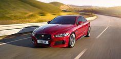 Jaguar Unleashed