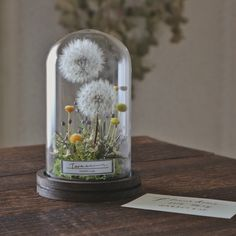 Diy Flowers, Flower Vases, Paper Flowers, Flower Bar, French Flowers, Diy Resin Art, Dried Flower Arrangements, Dried Flower Bouquet, How To Preserve Flowers