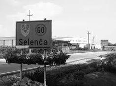 Bildergebnis für selenca