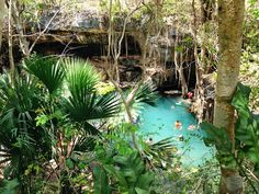 The View from Yucatan...: The Cenotes of San Antonio Mulix