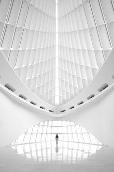 fiore-rosso:santiago calatrava   the fine arts museum [milwaukee. wisconsin].  [nick kessler photography]
