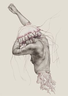 Elisa Ancori's Drawings Of Half-Dissected Mermaids