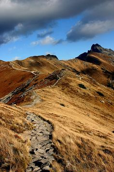Tatry mountains, Poland. Looks like a path the hobbit and friends walked.