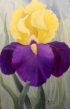 Iris //sold
