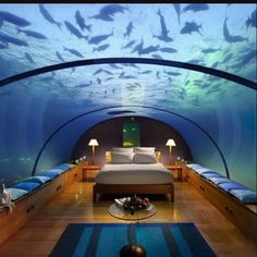 The astonishing Jules Undersea Lodge.  An underwater hotel in Key Largo, Florida…