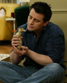 joey and baby duck