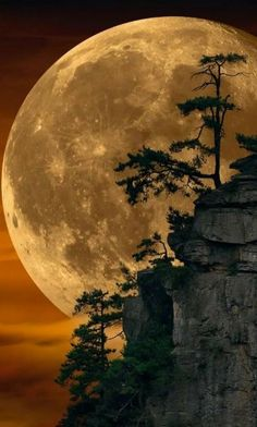 Can This Photo by Peter Lik Possibly Be Real?-Can this Photo by Peter Lik Possibly be Real? Peter Lik, whom many believe is the world& most … - Beautiful Nature Wallpaper, Beautiful Sunset, Beautiful Landscapes, Beautiful Moon Pictures, Most Beautiful Paintings, Pretty Images, Pretty Pictures, Moon Photography, Landscape Photography