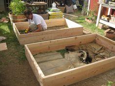 Gardening in a Box