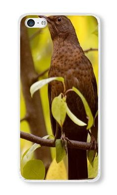 Cunghe Art Custom Designed Transparent PC Hard Phone Cover Case For iPhone 5C With Bird Branches Leaves Phone Case https://www.amazon.com/Cunghe-Art-Designed-Transparent-Branches/dp/B015XIHOX4/ref=sr_1_9584?s=wireless&srs=13614167011&ie=UTF8&qid=1469257746&sr=1-9584&keywords=iphone+5c https://www.amazon.com/s/ref=sr_pg_400?srs=13614167011&rh=n%3A2335752011%2Cn%3A%212335753011%2Cn%3A2407760011%2Ck%3Aiphone+5c&page=400&keywords=iphone+5c&ie=UTF8&qid=1469257672&lo=none