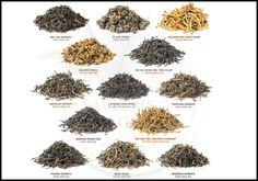 Print PDF  LES DIFFERENTS TYPES DE THÉ Avec 70 000 tasses bues chaque seconde dans le monde, le thé est LA boisson la plus consommée après l'eau ! Mais tous les thés ne se ressemblent pas... Type Process Profil général tasse Thé vert Les feuilles, une...
