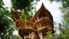 Woman Quits Job to Build Sustainable Bamboo Homes in Bali. Elora Hardy, raised in Bali, knows about bamboo's unique qualities firsthand. After working for years in the concrete jungle of New York. Cabinet D Architecture, Bamboo Architecture, Sustainable Architecture, Sustainable Houses, Sustainable Design, Tropical Architecture, Architecture Photo, Beautiful Architecture, Beautiful Buildings