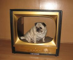 Dishfunctional Designs: Upcycled & Repurposed Vintage Console TV's. PRECIOUS!