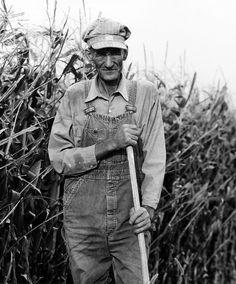 gone r the days of honest hardworking farmers. Now Monsanto (Monsatan) owns them. Bastards!!