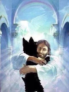 Your pets (our babies) all go to Heaven!! How do I know? I see them