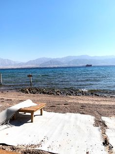 Eilat sucks, but I loved it - or: that time I might have moved in with a cult Dolphin Reef, I Am Overwhelmed, Eilat, Win My Heart, Girl Sleeping, Blog Pictures, Free Bible, Red Sea, Beach Town