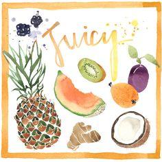 Juicy fruits watercolour illustration    Giorgia Bressan Illustration