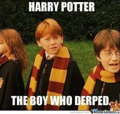 harry potter memes | ... seemed to like the harry potter memes that i posted here are some more