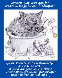 28 Boris en Zwarte kat in de bloempot