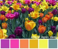 Tulip color palette. #spring