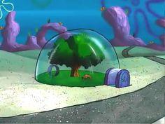 """If Ebola ever hits my city"" Spongebob Friends, Saturday Morning Cartoons 90s, Common White Girl, Sandy Cheeks, Pineapple Under The Sea, 80 Cartoons, 90s Childhood, 80s Kids, Spongebob Squarepants"