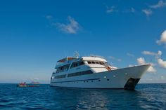 M/Y Galapagos Grand Odyssey - http://www.xoprivate.com/yachting/galapagos-grand-odyssey/