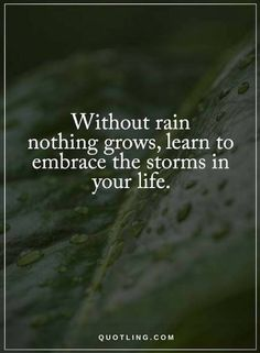 Quotes Without rain nothing grows, learn to embrace the storms in your life.