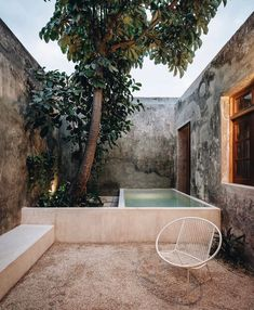 """Bēju   Archi & design on Instagram: """"Describe this garden design in ONE word. Go! ⠀⠀⠀⠀⠀⠀⠀⠀⠀ This is @casavagantes, located in Mérida, Yucatán, Mexico. Photography by…"""" Outdoor Spaces, Outdoor Living, Outdoor Decor, Hidden Garden, Archi Design, Patio, Backyard, Merida, Go Outside"""