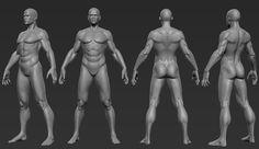 Male Anatomy Study by SinKunArts.deviantart.com on @DeviantArt