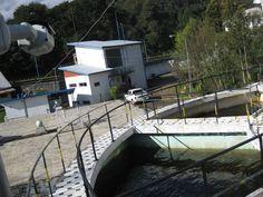 Avigilon en Chile, Avigilon Chile Distribuidor Polytrade