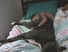 Jongen ligt met hond te slapen