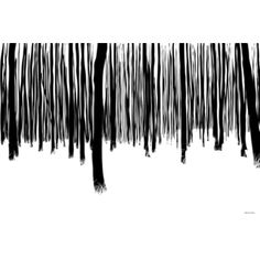 @Overstock.com - Maxwell Dickson 'Black and White Forest' Modern Canvas Wall Art - Artist: Maxwell DicksonTitle: Black and White ForestProduct type: Gallery-wrapped canvas art http://www.overstock.com/Home-Garden/Maxwell-Dickson-Black-and-White-Forest-Modern-Canvas-Wall-Art/8345190/product.html?CID=214117 $60.34