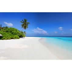 Ik vond dit op Beslist.nl: Vlies fotobehang Strand Malediven}