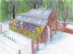 Greenhouse off Goat Barn idea...The Homestead Survival | DIY Greenhouse and Chicken Coop Plans For Year Round Backyard Sustainability | Homesteading.