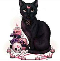 Magic of the black cat - random cool stuff - Cat Drawing Witch Art, Witch Aesthetic, Arte Horror, Illustration, Creepy Cute, Gothic Art, Halloween Art, Cat Art, Art Inspo