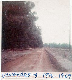 Foothill & Vineyard - 1969 (floods of Upland California, Southern California, California History, Rancho Cucamonga, Route 66, Historical Photos, Electric Station, Vineyard, Empire