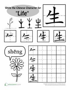 Worksheets: Learning Chinese Characters: Life