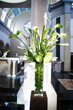1000 Images About Arum Calla Lily On Pinterest Calla Lilies Calla Lily Centerpieces And Vase