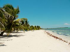 Casa Rosa beach